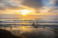 De kust van de Zwarte Zee, Varna, Bulgarije Royalty-vrije Stock Afbeelding