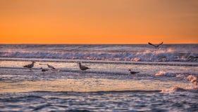 De kustlijn van de Atlantische Oceaan Stock Foto