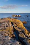 De kustlijn van de Oostzee in Zweden Stock Foto