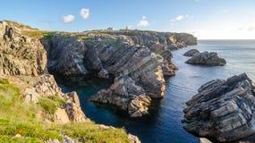 De kustlijn van kaapbona vista in Newfoundland, Canada Royalty-vrije Stock Foto's