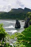 De kustlijn van kaaphedo in het noorden van Okinawa stock afbeeldingen