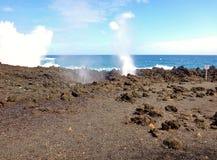 De Kustlijn van Maui stock afbeeldingen