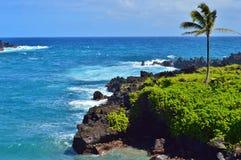 De Kustlijn van Maui royalty-vrije stock foto's