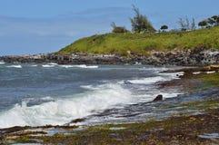 De Kustlijn van Maui stock foto