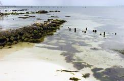 De Kustlijn van Mujeres van Isla. Royalty-vrije Stock Afbeeldingen