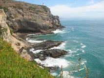 De kustlijn van Nieuw Zeeland Stock Fotografie