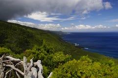 De kustlijn van Pico eiland, de Azoren Stock Afbeelding