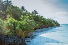 De Kustlijn van Zanzibar royalty-vrije stock foto's