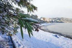 De kustlijn van de Zwarte Zee met sneeuw wordt behandeld die royalty-vrije stock afbeeldingen