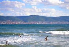 De kustmening van de Zwarte Zee Stock Fotografie