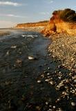 De kustportretten van Oregon Stock Foto
