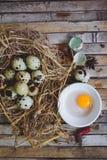 De kwartels nestelen met bevlekte eieren, lepel, gebroken ei op een plaat Royalty-vrije Stock Afbeeldingen