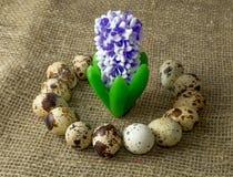 De kwartelseieren en de hyacint zijn in een cirkel op een houten lijst Royalty-vrije Stock Afbeeldingen