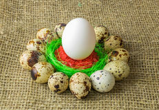 De kwartelseieren en het kippenei met zijn in een cirkel rond de plastic blauwe kom rood zout op een houten lijst Stock Foto's