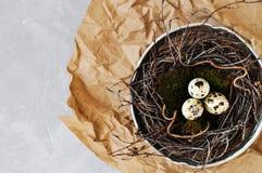 De kwartelseieren op groen natuurlijk mos in een nest van takken maakten in een oude ijzerzeef Milieuvriendelijke retro concepten royalty-vrije stock afbeelding