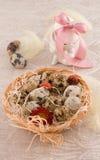 De kwartelseieren van Pasen met konijntje stock afbeeldingen