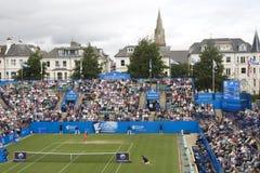 De Kwartfinales van Daniela Hantuchova Eastbourne 2011 Stock Afbeeldingen