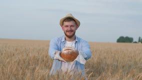 De kweker van de agronoomkorrel, jonge mens geeft u heerlijk eigengemaakt brood glimlachend in de herfstweide van de korreloogst stock footage