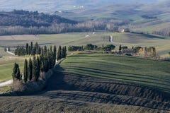 De långa skuggorna av cypressträd på fälten av den Tuscan bygden i landskapet av Siena, Tuscany, Italien arkivfoto
