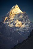 Or de l'Himalaya (Pharilapche 6.073 m) Image stock