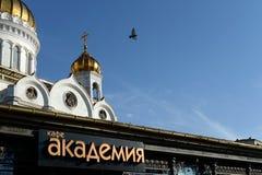` De la academia del ` del café en la catedral de Cristo el salvador Fotografía de archivo