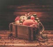 De la acción de gracias todavía del día vida Foto de archivo libre de regalías