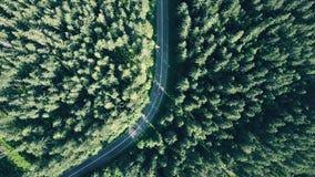 De la antena del top opinión abajo de un bosque europeo del árbol de abeto y de un coche rojo que apresuran en el camino Imagenes de archivo