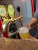 De la bière est plue à torrents dans une glace image libre de droits