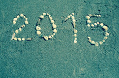 2015 de la coquille de mer Photo libre de droits