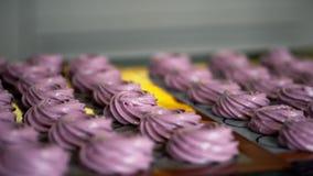 De la crème de la myrtille pour faire cuire le dessert sont faites cuire au four sur le plateau de cuisson en plan rapproché de f banque de vidéos