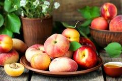 De la fruta de los melocotones y de los albaricoques todavía del verano vida hermosa madura Foto de archivo
