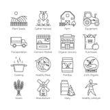 De la granja a bifurcar sistema de la línea fina plana vector los ejemplos del icono Fotografía de archivo libre de regalías