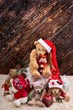 De la Navidad de peluche todavía de los osos vida en fondo de madera Imagen de archivo libre de regalías