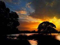 De la oscuridad Till Dawn Fotos de archivo libres de regalías