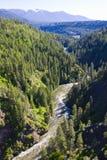 De la passerelle au-dessus de la gorge Idaho du nord de fleuve de Moyie Image stock