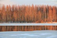 De la puesta del sol del invierno del paisaje reflexión hermosa del lago nature al aire libre Foto de archivo
