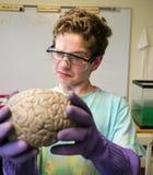 De la Science étrange photo libre de droits