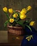 De la serie con los tulipanes Imágenes de archivo libres de regalías