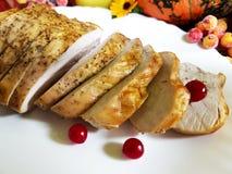 De la Turquie toujours automne de la vie d'apéritif de fleur de thanksgiving photographie stock