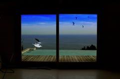 De la ventana Fotos de archivo libres de regalías