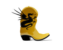 De Laarzen van de draak Stock Afbeeldingen