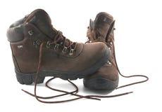 De laarzen van de trekking Stock Fotografie