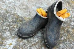 De laarzen van de tuin Royalty-vrije Stock Afbeeldingen