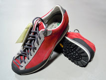 De laarzen van de wandeling stock foto