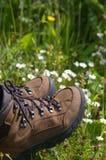 De laarzen van de wandeling op gebied van daisys stock fotografie