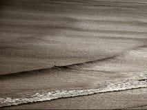 De laatste branding van de dag vóór zonsondergang in Newquay Cornwall, wordt genomen door een eenzame surfer, laatste op het stra stock foto's