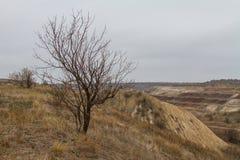 De laatste dagen in de Tavrian-steppe royalty-vrije stock fotografie