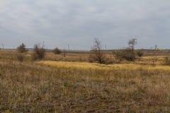 De laatste dagen in de Tavrian-steppe stock foto