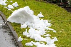 De laatste sneeuw Stock Foto