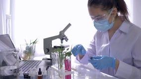 De laboratoriummedewerker voert biologische studie met installaties in speciaal uitgerust laboratorium met microscoop uit stock video